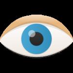 Augensteuerung - Das Merkmal des OSC Talker für menschen mit behinderungen